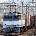 Photos: EF65 2088牽引77レ府中本町通過
