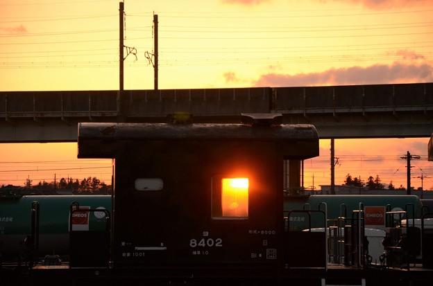 Photos: 夕陽の緩急車