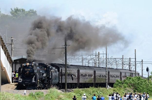 D51 498牽引SL本物の出会い栃木号岩舟発車
