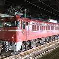 Photos: 秋田のEF81 136号単機長岡停車