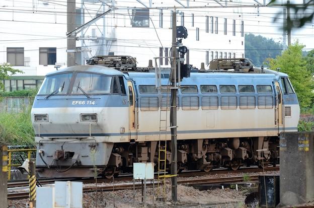 EF66 114号機 宇都宮