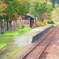 写真: 花咲く上神梅駅♪