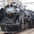 D51 498青プレート