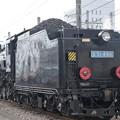 D51 498青プレート(3)