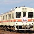 写真: 関東鉄道キハ317+キハ318鉄道の日記念号