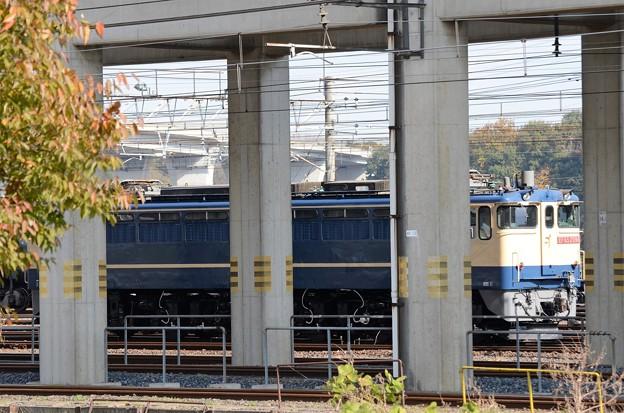 宇都宮貨物(タ)にEF65 2096号機