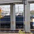 Photos: 宇都宮貨物(タ)にEF65 2096号機