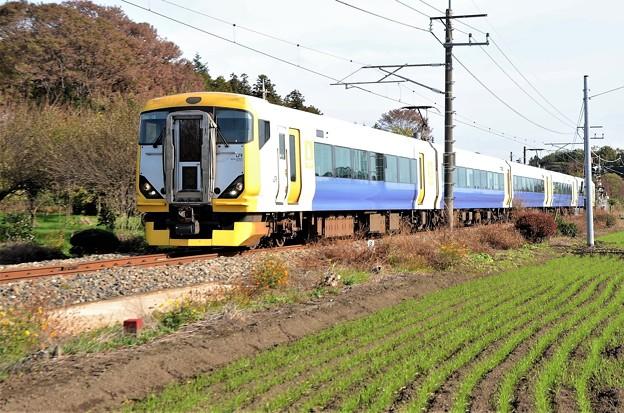 E257系団臨日光へ