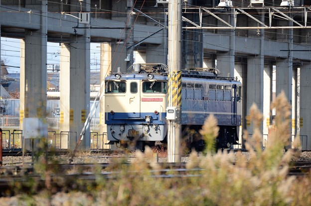 Photos: EF65 2139原色機