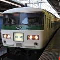 185系A7編成回送幕 東京9番到着