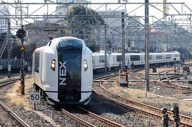 E259系特急成田エクスプレス19号成田4番通過