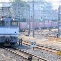 Photos: EF65 2095号機牽引1093レ成田4番通過