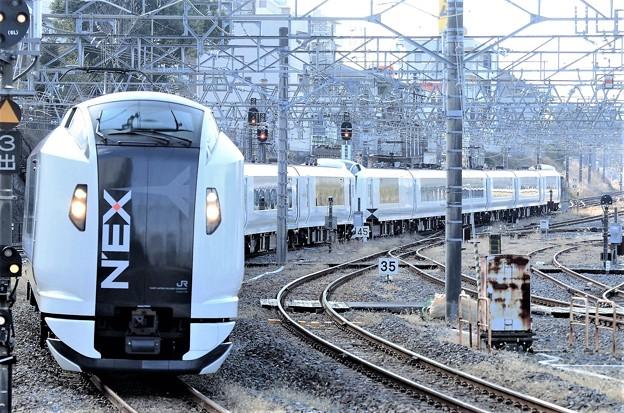 Photos: E259系特急成田エクスプレス19号