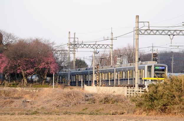 初春の東武宇都宮線