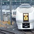 Photos: 651系臨時特急草津84号