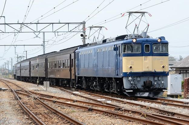 EF64 37+旧型客車+EF65 501団臨