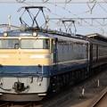 EF65 501+旧型客車+EF64 37団臨返却回送