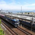 Photos: 明石海峡大橋とEF210牽引貨物