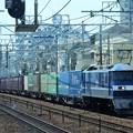 Photos: 桃太郎白帯108号機牽引コンテナ貨物