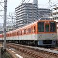 Photos: 阪神8000系直通特急阪神梅田行き
