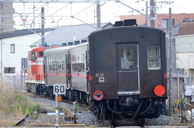 Photos: DE10 1685+50系DL & SLもおか号
