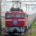 Photos: EF81 98+E26系カシオペア紀行号秋田発上野行き
