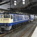 Photos: EF65 2066原色機牽引4073レ小山11番にて