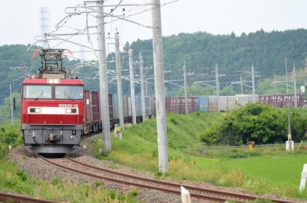 Photos: 金太郎14号機牽引高速貨物3050レ