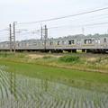 Photos: 田植えの水田脇を行く宇都宮線205系
