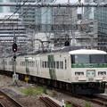 185系A1+C3編成回送東京8番発車