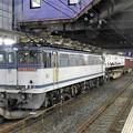 Photos: EF65 2084牽引4073レ小山11番待避