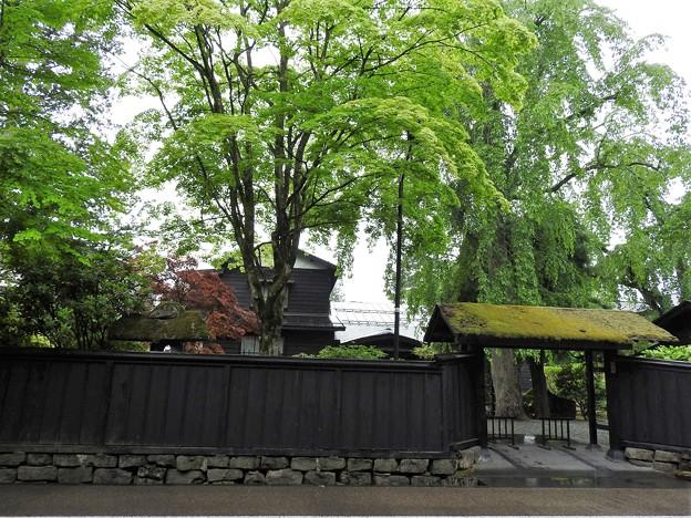 苔むす武家屋敷門