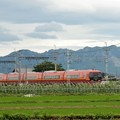 Photos: 古賀志山を背に行く253系特急きぬがわ4号新宿行き