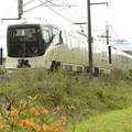TRAIN SUITE 四季島 日光へ