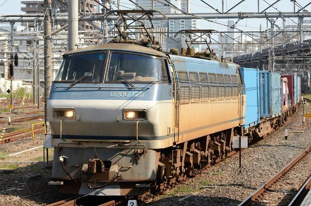 EF66 125号機牽引4093レ大宮10番入線