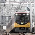Photos: 京阪8000系特急淀屋橋行き寝屋川市通過