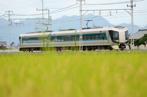 稲穂実る東武日光線を行く特急リバティけごん76号