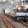 Photos: 武蔵野線を行くEF64 1047牽引1094レ