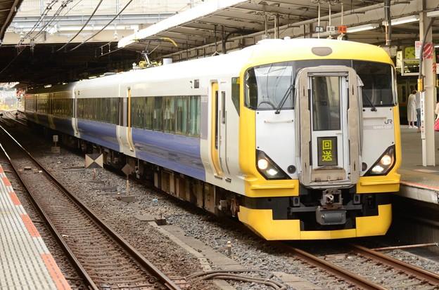 E257系回送大宮7番入線