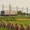 Photos: 秋色の東武宇都宮線