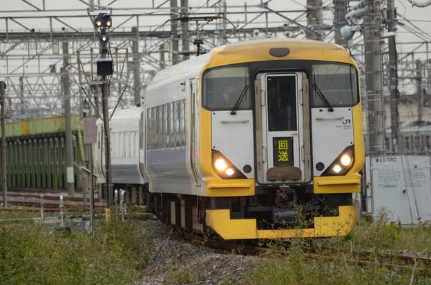 E257系臨時快速おさんぽ川越号送込み回送出動