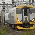 Photos: E257系臨時快速おさんぽ川越号送込み回送出動