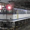 Photos: EF65 2085単機4073レ小山11番待避