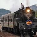 Photos: 停車中に機関車整備