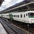 Photos: 185系A7+C3編成特急踊り子105号東京9番にて