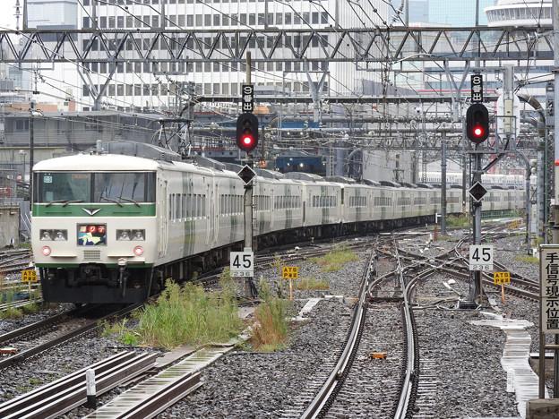 185系7+C3編成特急踊り子105号東京発車