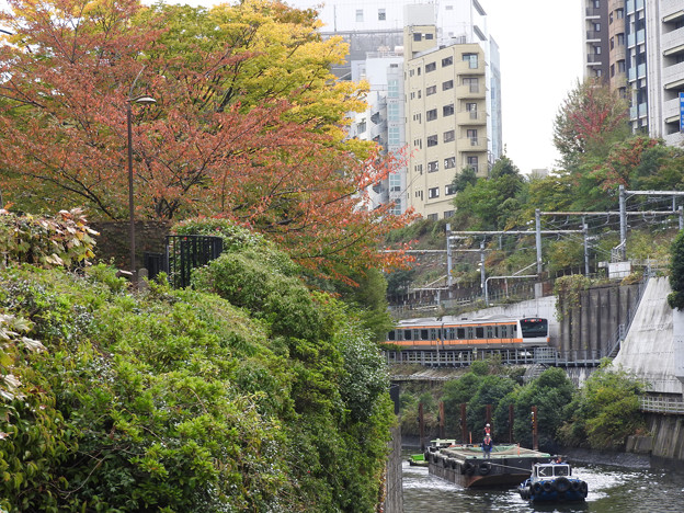 Photos: 秋色の神田川水道橋界隈