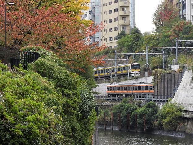 色付く秋の神田川水道橋界隈