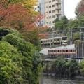 Photos: 色付く秋の神田川水道橋界隈