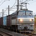 Photos: EF66 133号機牽引4093レ石橋~宇都宮貨物(タ)通過